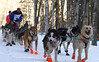Michelle Phillips of Tagish, Yukon, in her fifth Iditarod