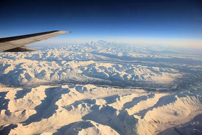 Iditarod XLII - The End