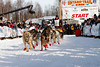 488-20130303AlaskaIditarodTrip__MG_7363_7008