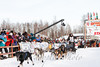758-20130303AlaskaIditarodTrip__MG_0080_8270