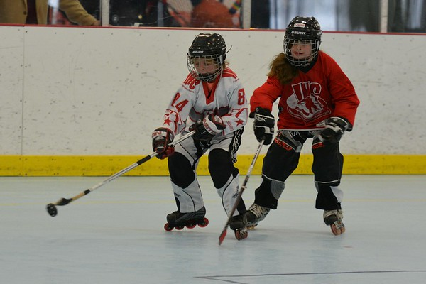 In-line hockey playoffs 10U