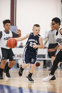 basketball-591