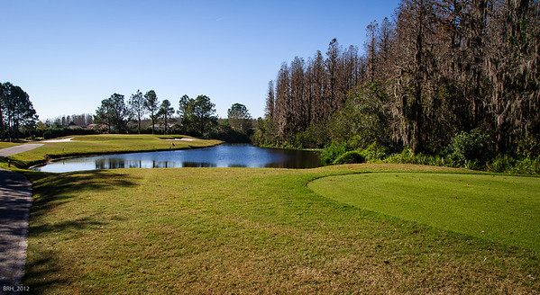 6th Hole Par 3 at Cheval Country Club Lutz Fl   Dec 012