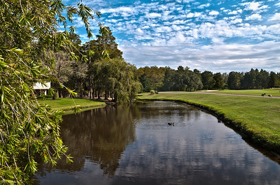 3rd Hole at the Island Golf Course Innisbrook Fl   Oct 2011