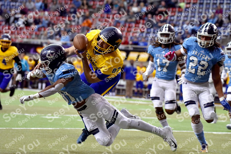-Messenger photo by Britt Kudla<br /> Jarran Barber of Iowa Central knocks the ball loose from Monroe Diogo Alves during the Graphic Edge Bowl inside the UNI Dome on Sunday