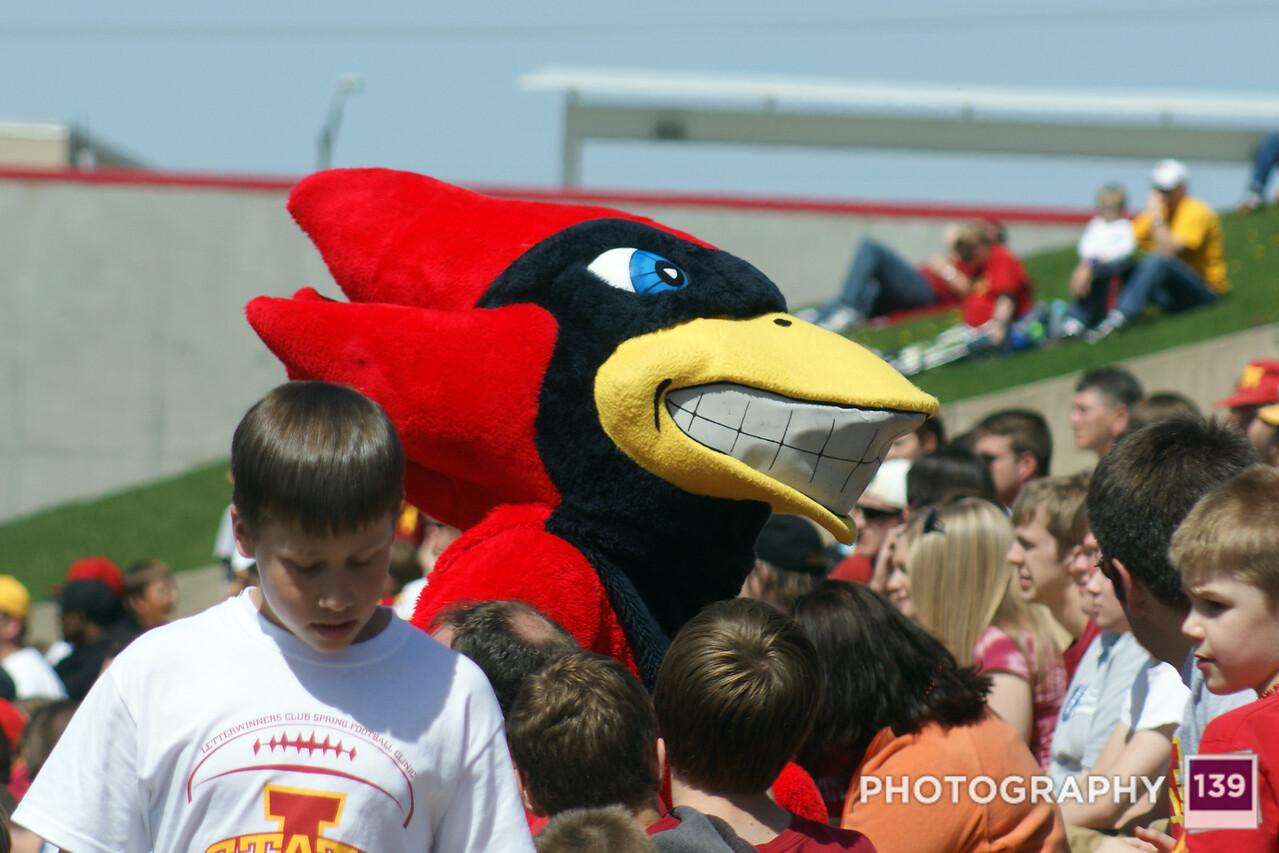 Iowa State Spring Game - 2010