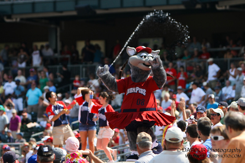 IronPigs-234