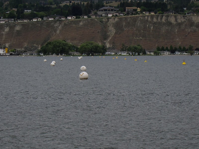 Penticton municipal swim loop in Lake Okanagan - 1km each way, 100m from shore, very convenient and safe!