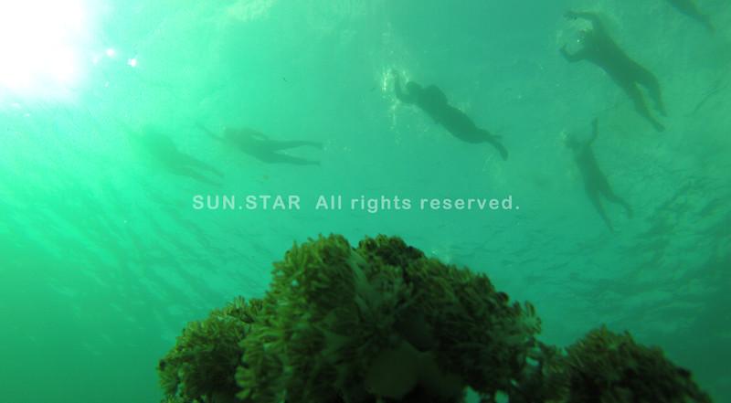 Underwater shot of Cobra Energy Drink Ironman 70.3 Philippines 2015 swim leg