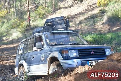 ALF75203