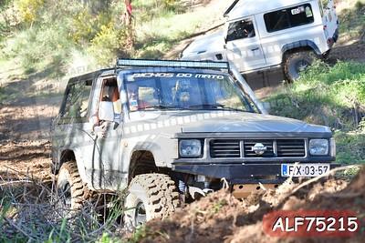 ALF75215