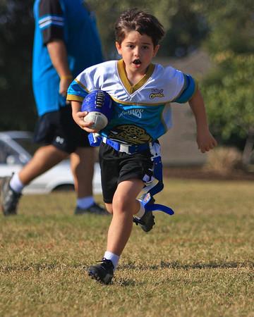 Jaguars Football PreK/K Fall 2008