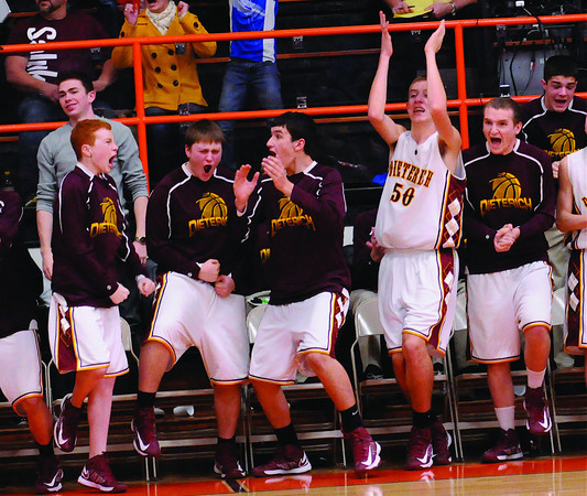 Members of the DIeterich High School bench celebrate after Tanner Traub's game-winning three-pointer against Neoga at the NTC tournament.