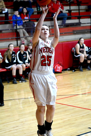 Neoga's Mary Hill puts up a short jump shot during the Indians' win over North Clay at the National Trail Conference Tournament at Beecher City.