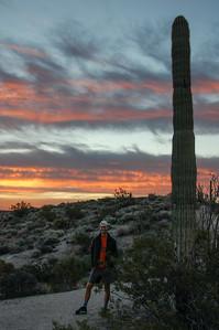 A taller Saguaro.