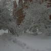 December 2009 019