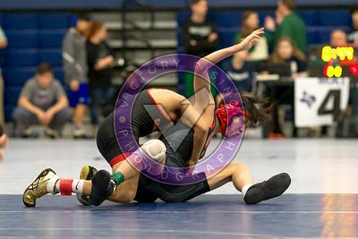 Texas Region 3 5a wrestling tournament 2018Texas 5a iii regional championshipsTexas 5a iii regional championships