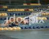 Clev HS March Petzinger 100 Freestyle