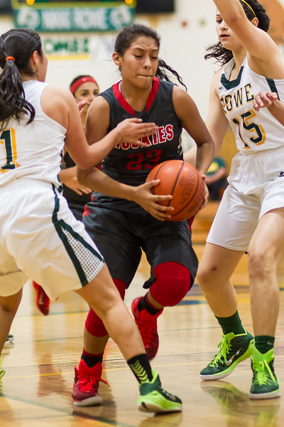 20150102 Girls Basketball J-L vs Rowe_dy 021.jpg