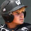 6-10-12<br /> WHS Baseball<br /> Dakota Lamott Semi-State game.<br /> KT photo | Tim Bath