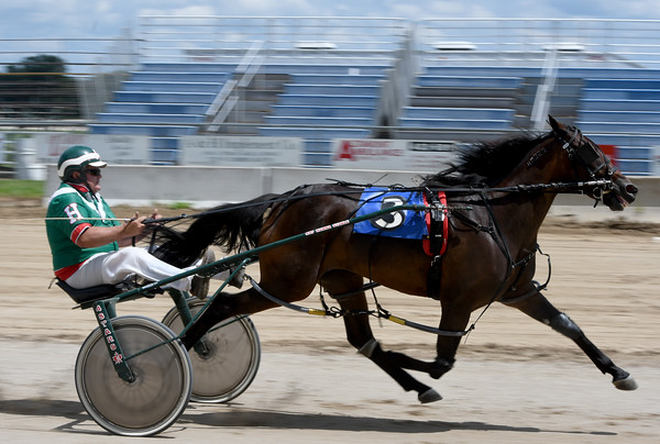 Ray Hanna drives Fox Valley Dandy to a first place win in the Big 10 2-year-old filly race Sunday afternoon at the Effingham County Fair in Altamont.