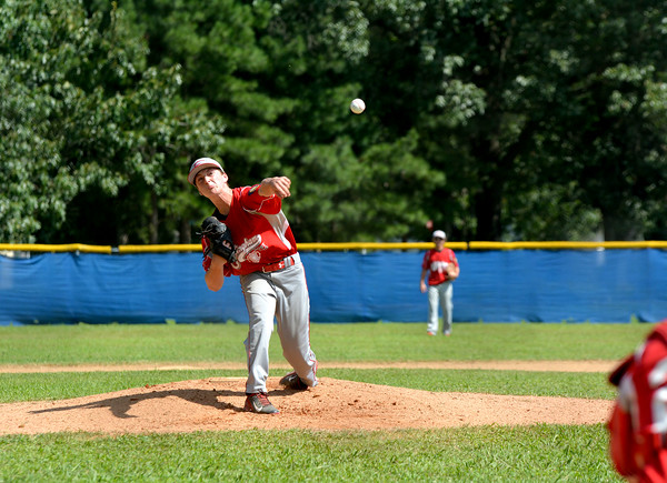 Effingham's Ryan Sandifer delivers a pitch during the Divisional Tournament in Metropolis.