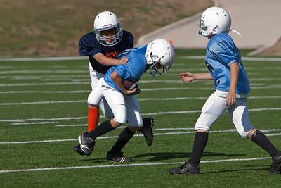 Panthers vs Bears 090411-2837
