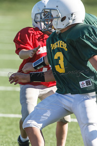 012_Packers_Cardinals_092913_4489