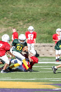 024_Packers_Cardinals_092913_4507