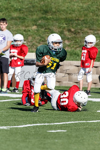 033_Packers_Cardinals_092913_4516