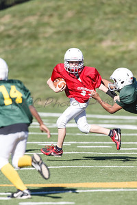 021_Packers_Cardinals_092913_4503