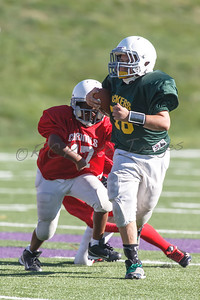 014_Packers_Cardinals_092913_4492