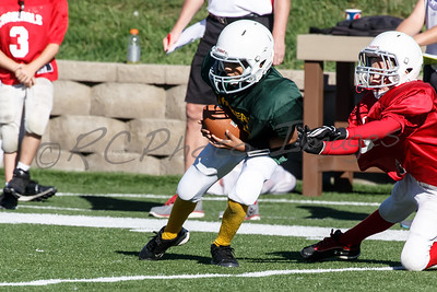 027_Packers_Cardinals_092913_4510