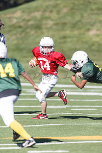 022_Packers_Cardinals_092913_4504