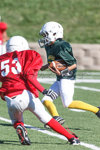 006_Packers_Cardinals_092913_4483