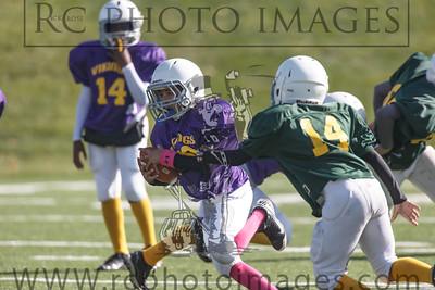 010_Vikings_Packers_102713_7621