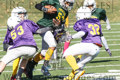 023_Vikings_Packers_102713_7638