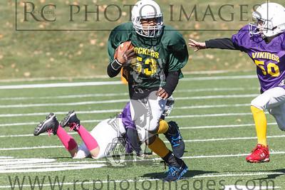 021_Vikings_Packers_102713_7636