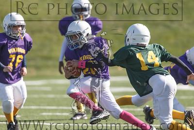 011_Vikings_Packers_102713_7622