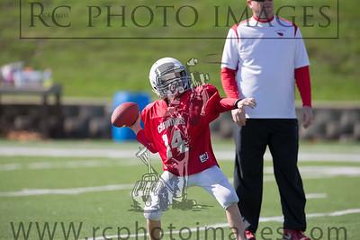 002_JFL Cardinals_Raiders B_101914_5211