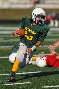 015_Cardinals_Packers_100916_7496