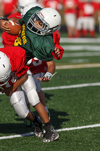 017_Cardinals_Packers_100916_7498