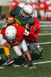 016_Cardinals_Packers_100916_7497