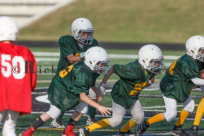 018_Cardinals_Packers_100916_7499