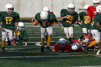 008_Cardinals_Packers_100916_7485