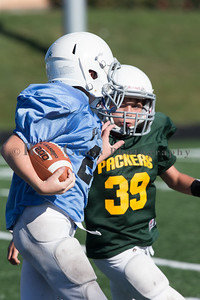 022_Packers_Panthers_091116_3484