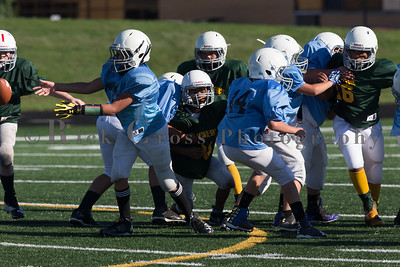 039_Packers_Panthers_091116_3501