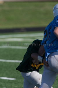 028_Packers_Panthers_091116_3490