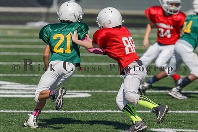 007_JFL_Packers_Cardinals_100817_9087