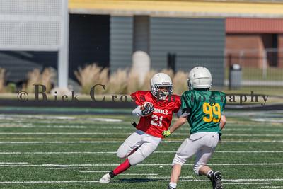 013_JFL_Packers_Cardinals_100817_9096
